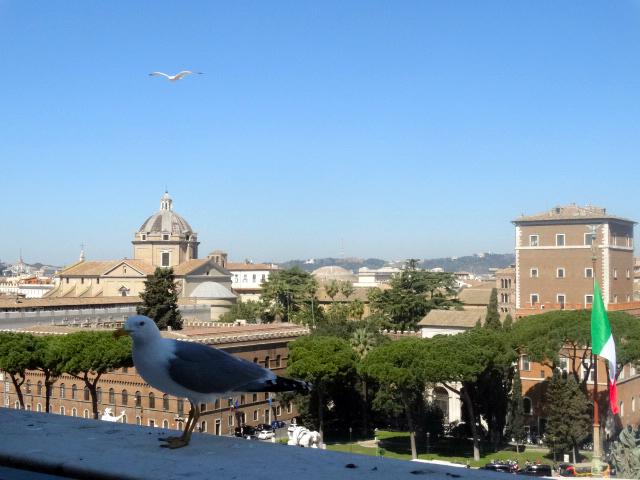 Poze Roma Vacanta