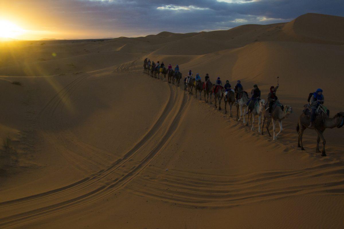 Camile Desert Sahara