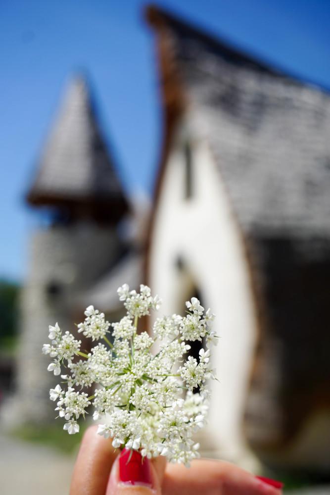 Floare Castel