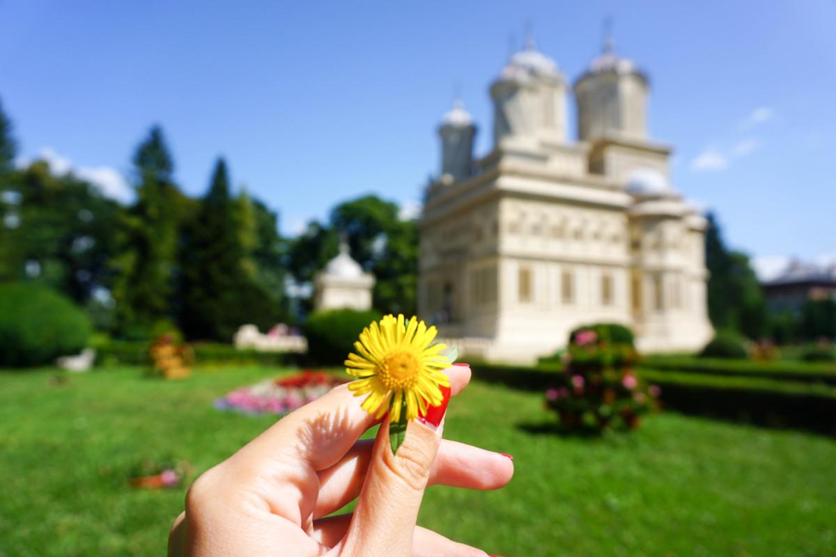 Manastirea Curtea de Arges Fotografii