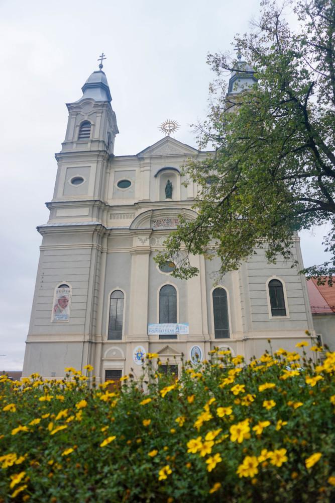 Catedrala Franciscana