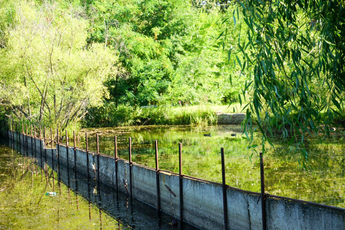 Targoviste Lac Poze