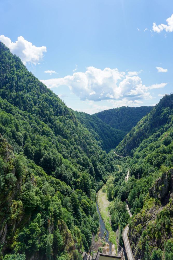 Vidraru Baraj Poze