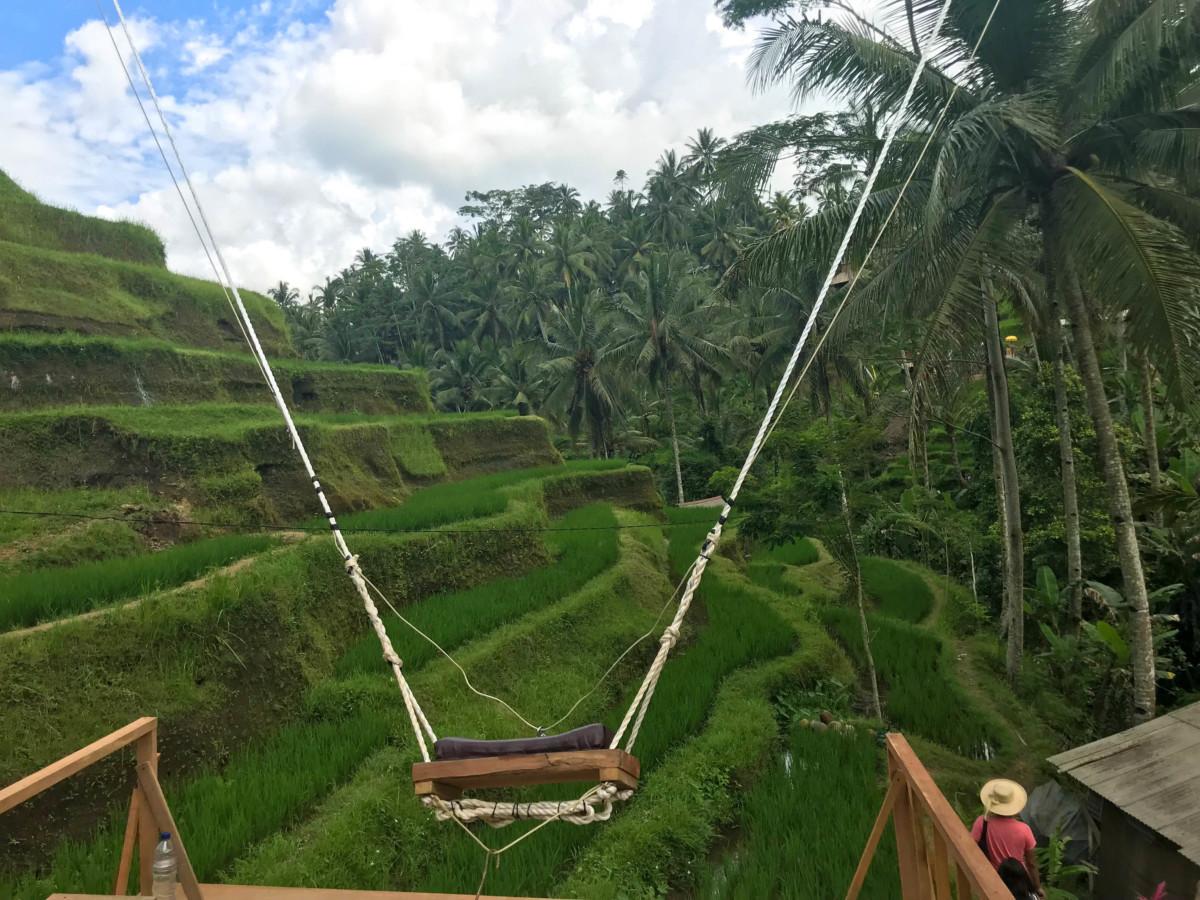 Leagan Bali Vacanta Swings