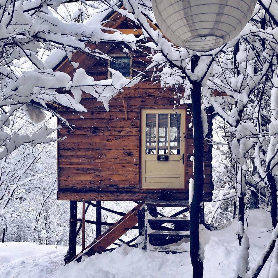 Transylvania Log Cabin