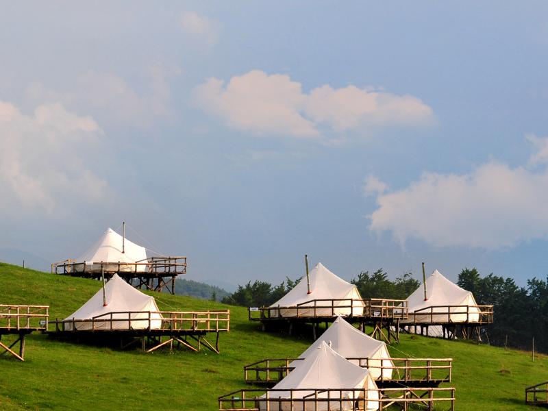 Ursa Mica Glamping Resort Poze