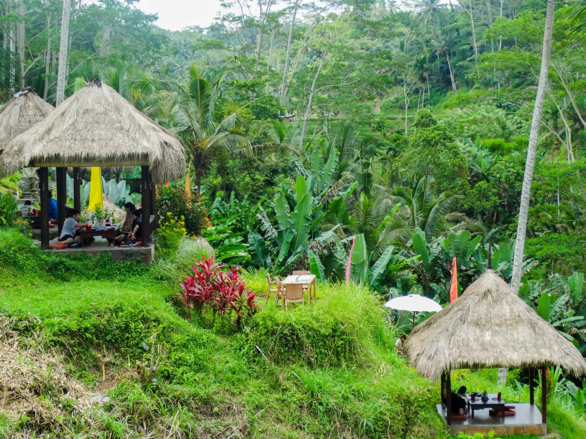 Vacanta Calatorie Bali Terase