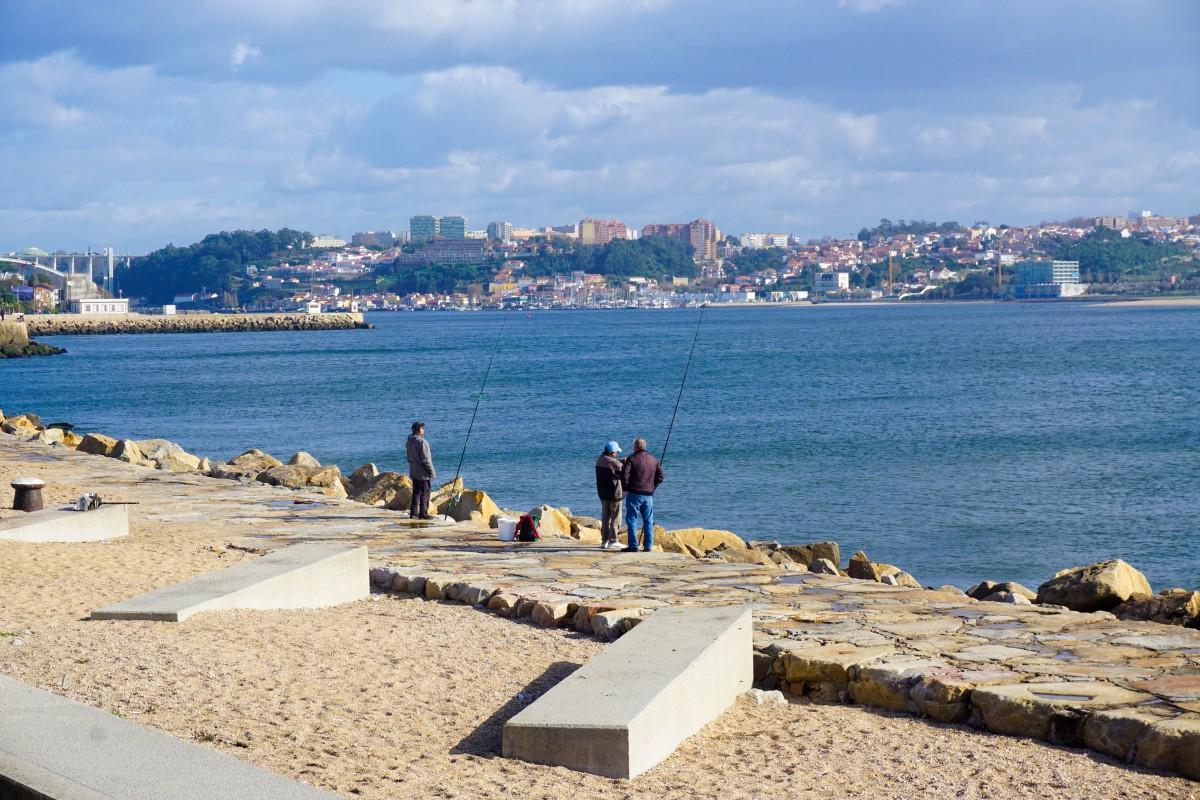 Pescuit Porto Foz Do Douro
