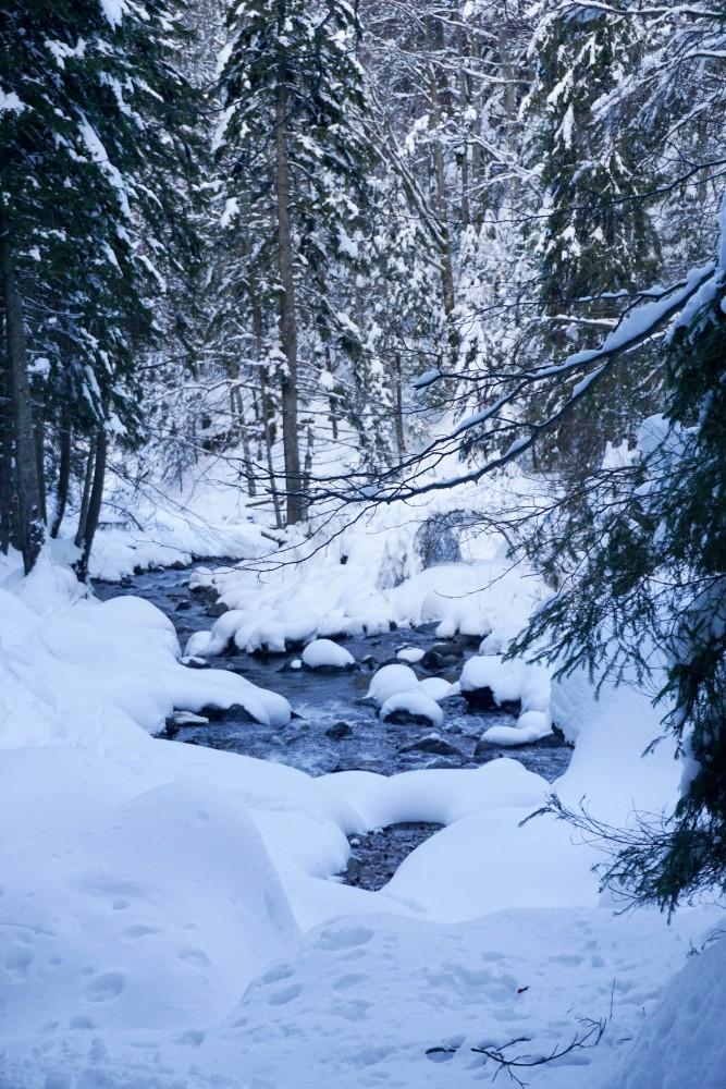 Brazi Fagaras Iarna