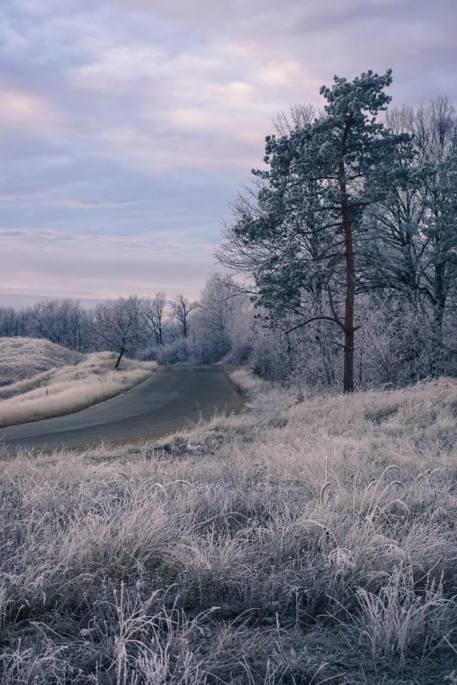 Iarna Calatorie Hunedoara
