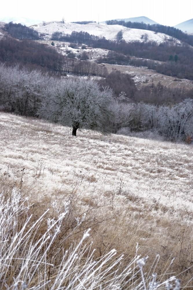 Iarna Peisaj Hunedoara