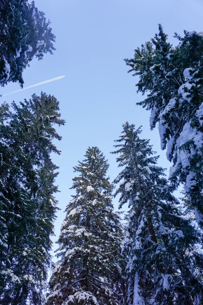 Munte Iarna Brazi Fagaras