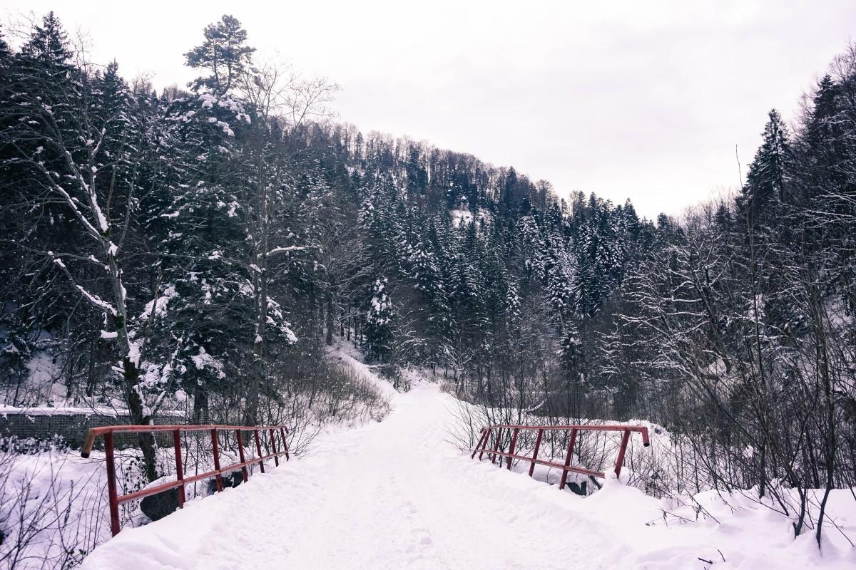 Valea Sambetei Pod