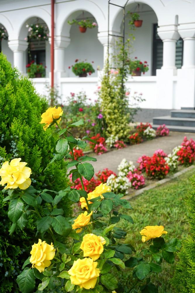 Ghighiu Manastire Gradina