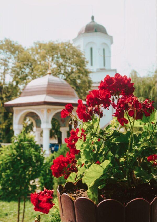 Ghighiu Manastire Poze