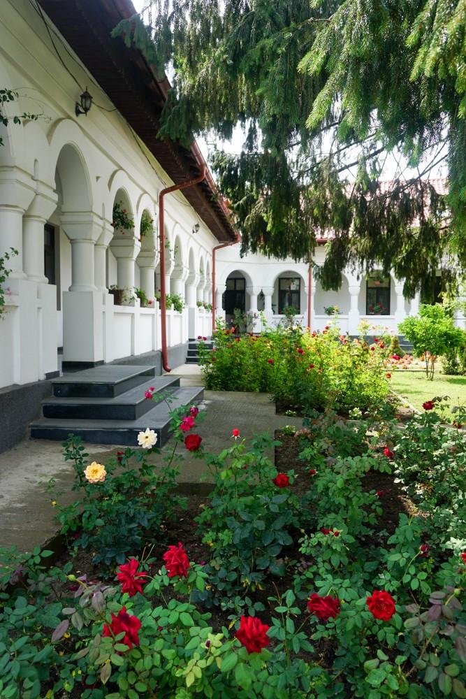 Ghighiu Manastire Trandafiri