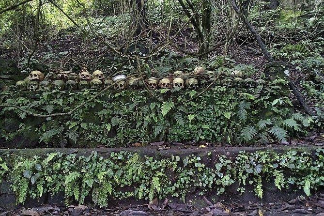 Cimitirul Trunyan Bali