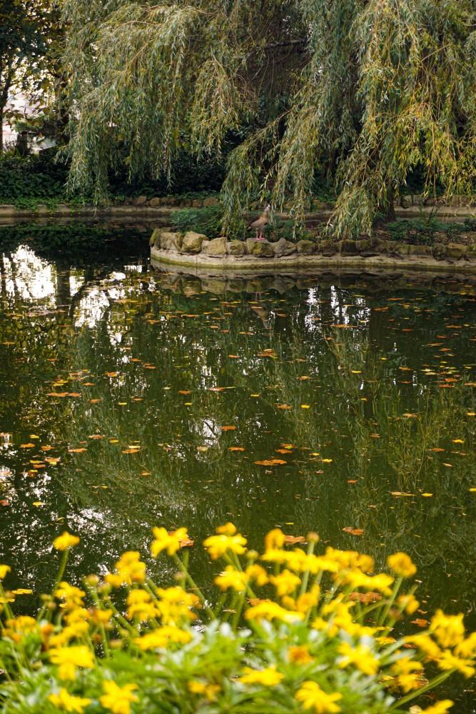 Jardim do Palacio da Cristal