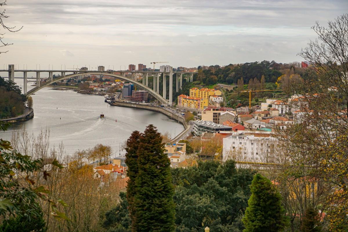Raul Douro Porto