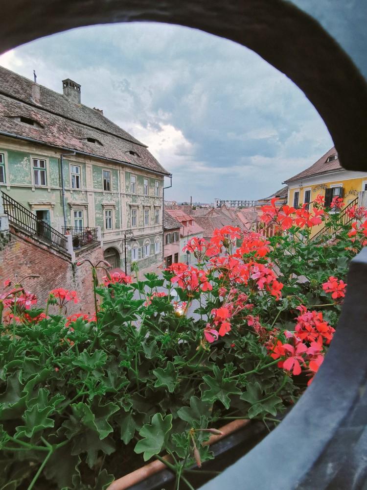 Sibiu Case Turism