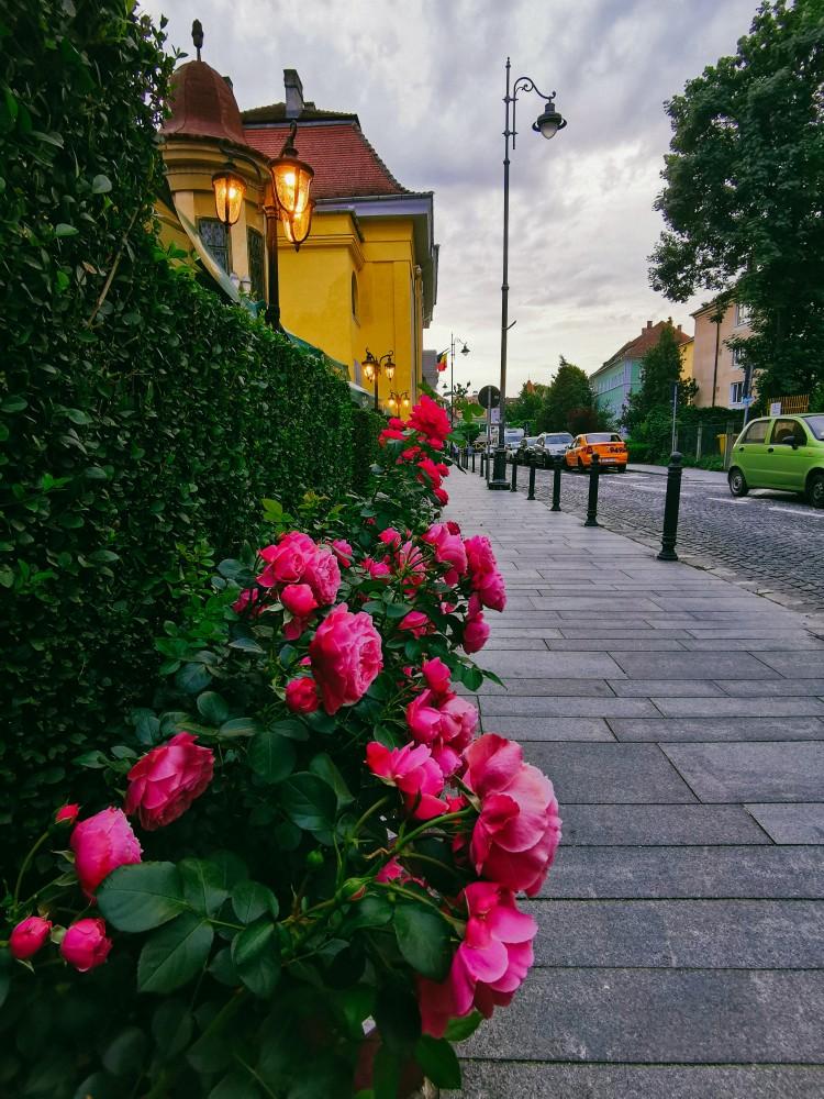 Sibiu Excursie