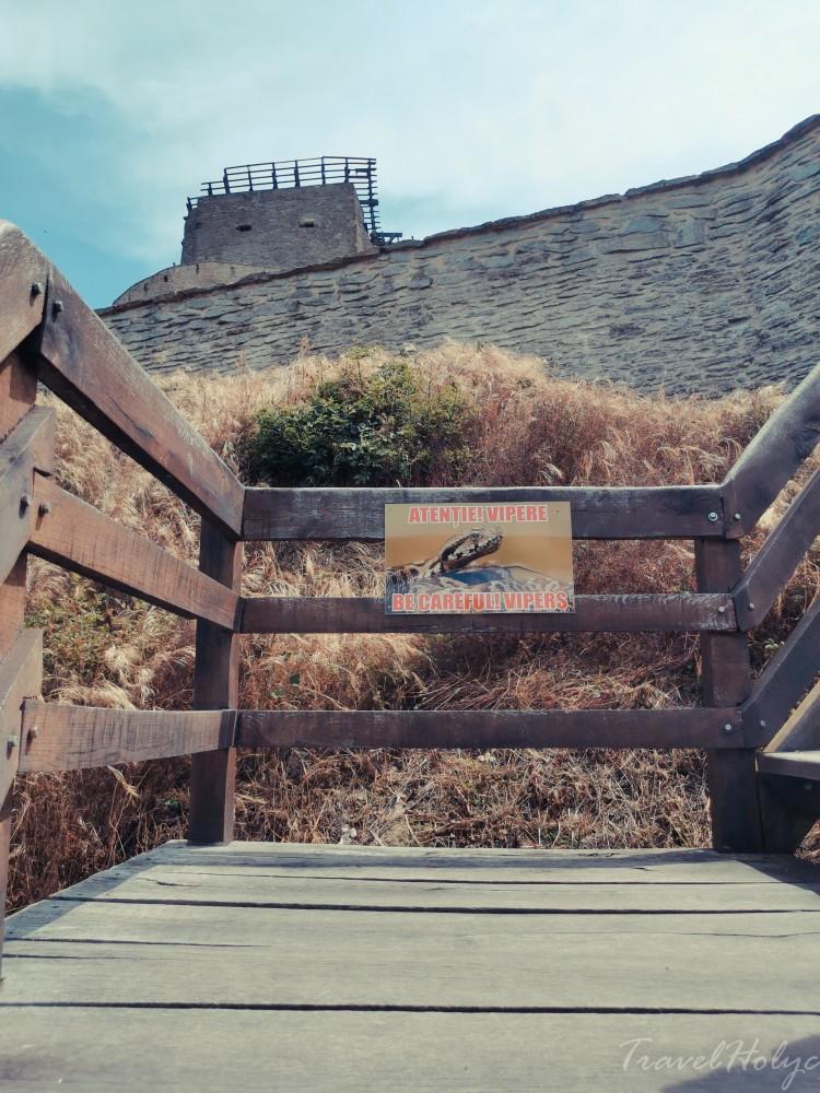 Cetatea Devei Vipere