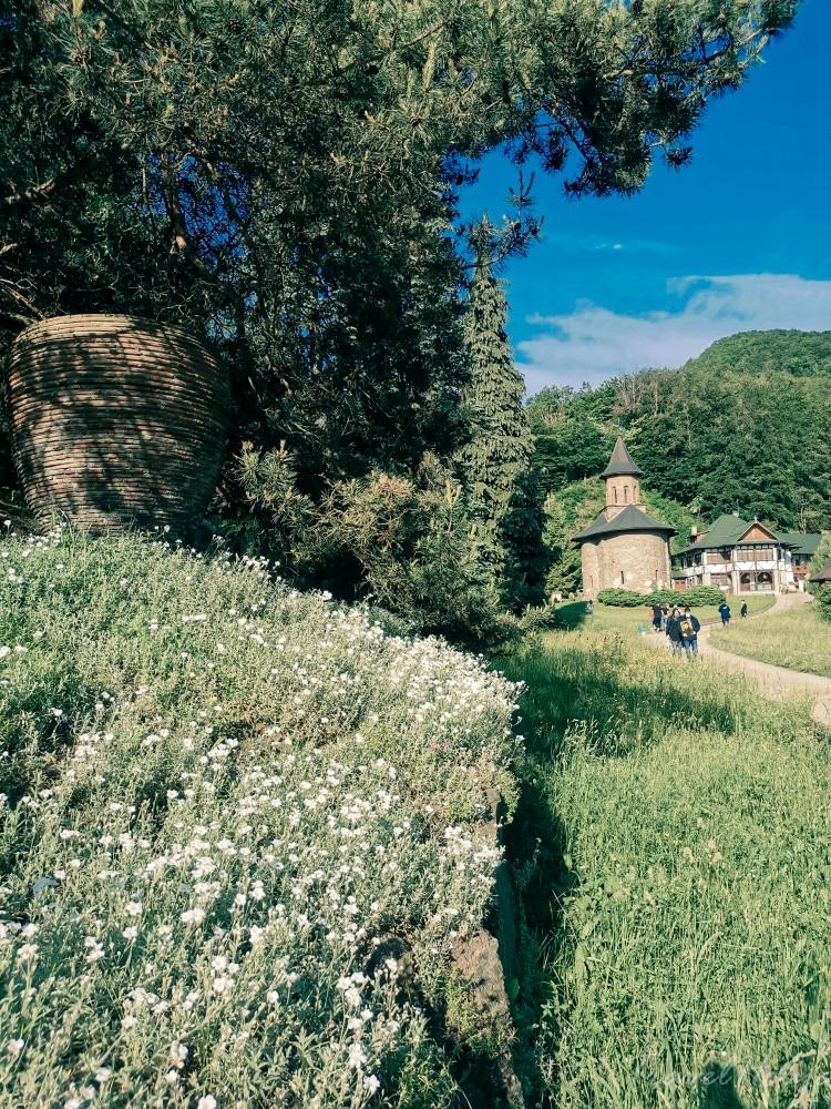 Manastire Prislop Arsenie Boca
