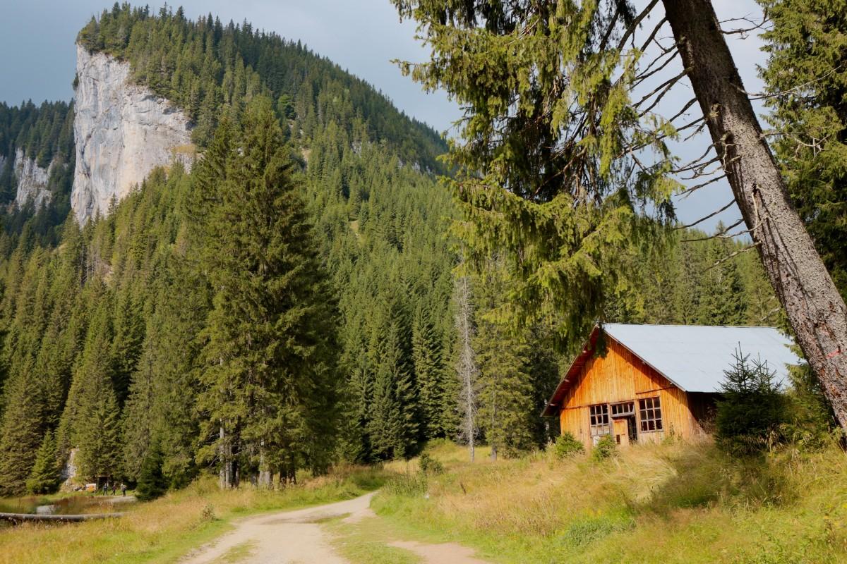 Cheile Zanoagei Camping