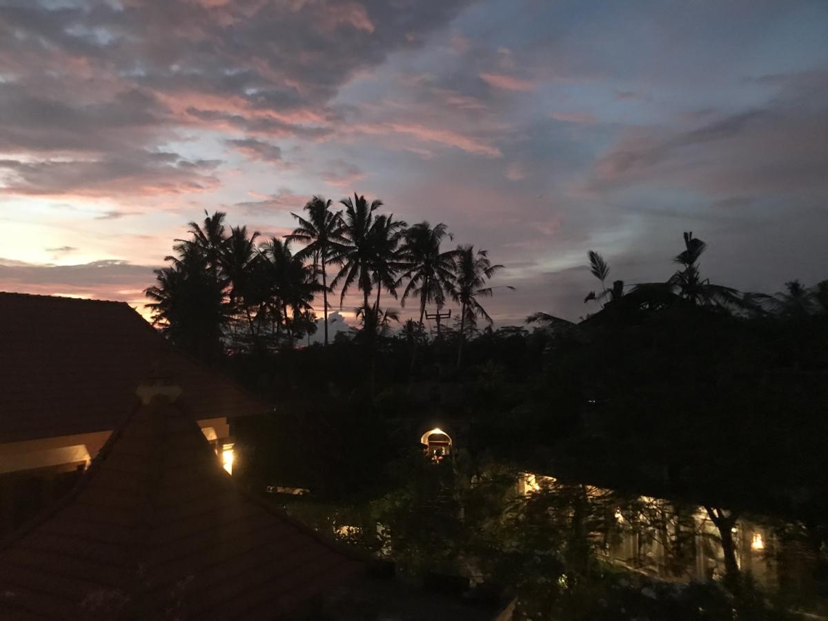 Apus Bali poze
