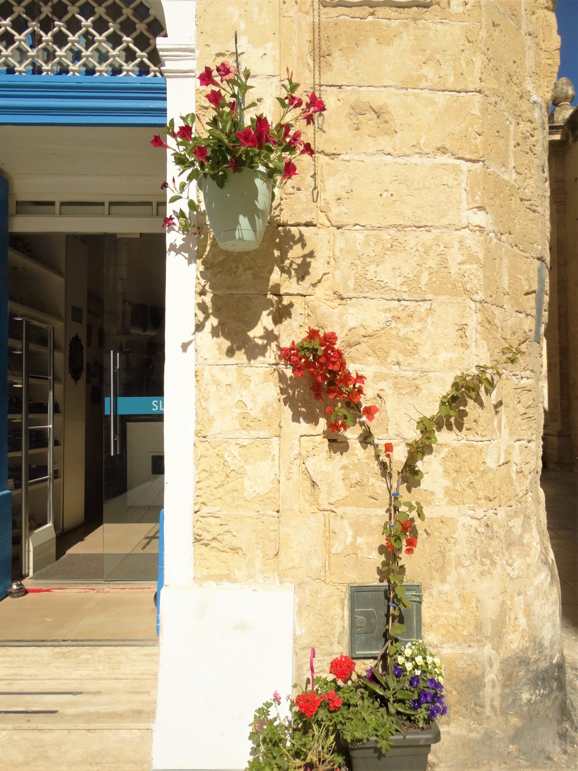 Calatorie Malta Poze