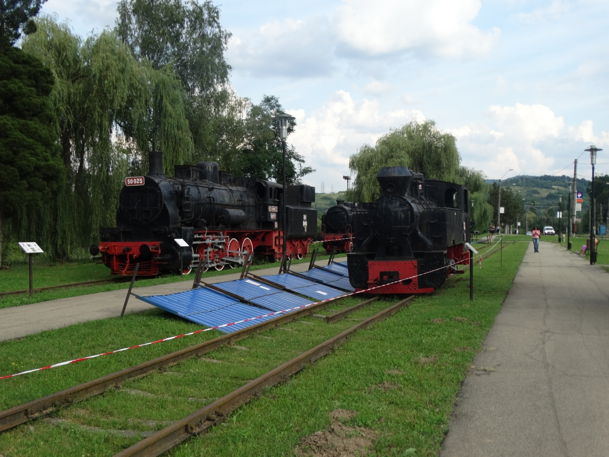 Muzeu Aer Liber Locomotive