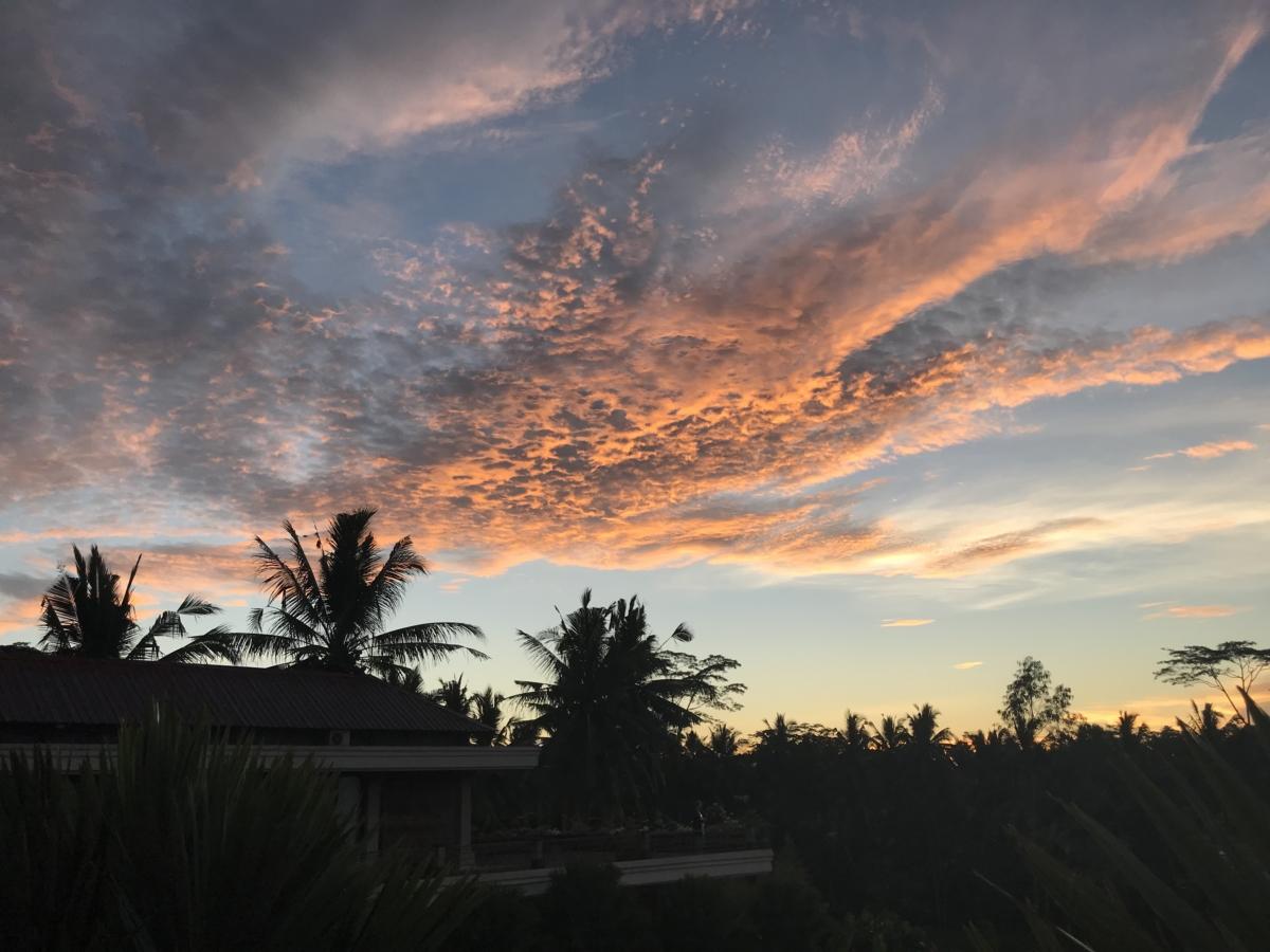 Palmieri Apus Bali
