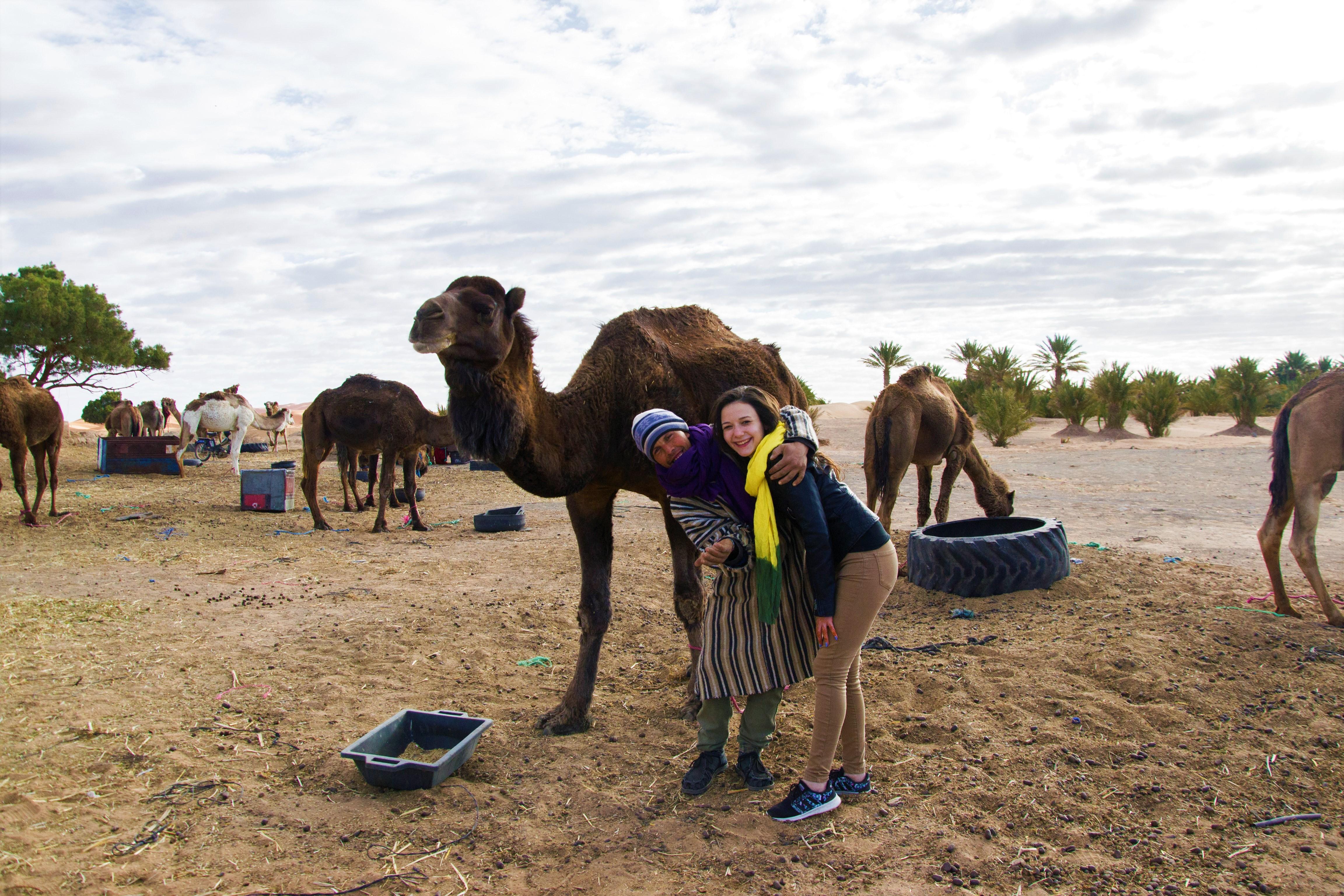 Camile Maroc Berberi