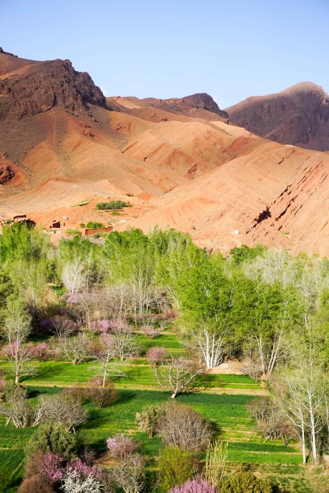 Dades Gorge Maroc Ghid