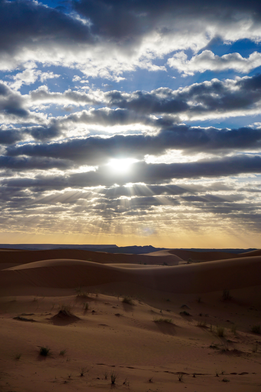 Desert Sahara Vest Rasarit