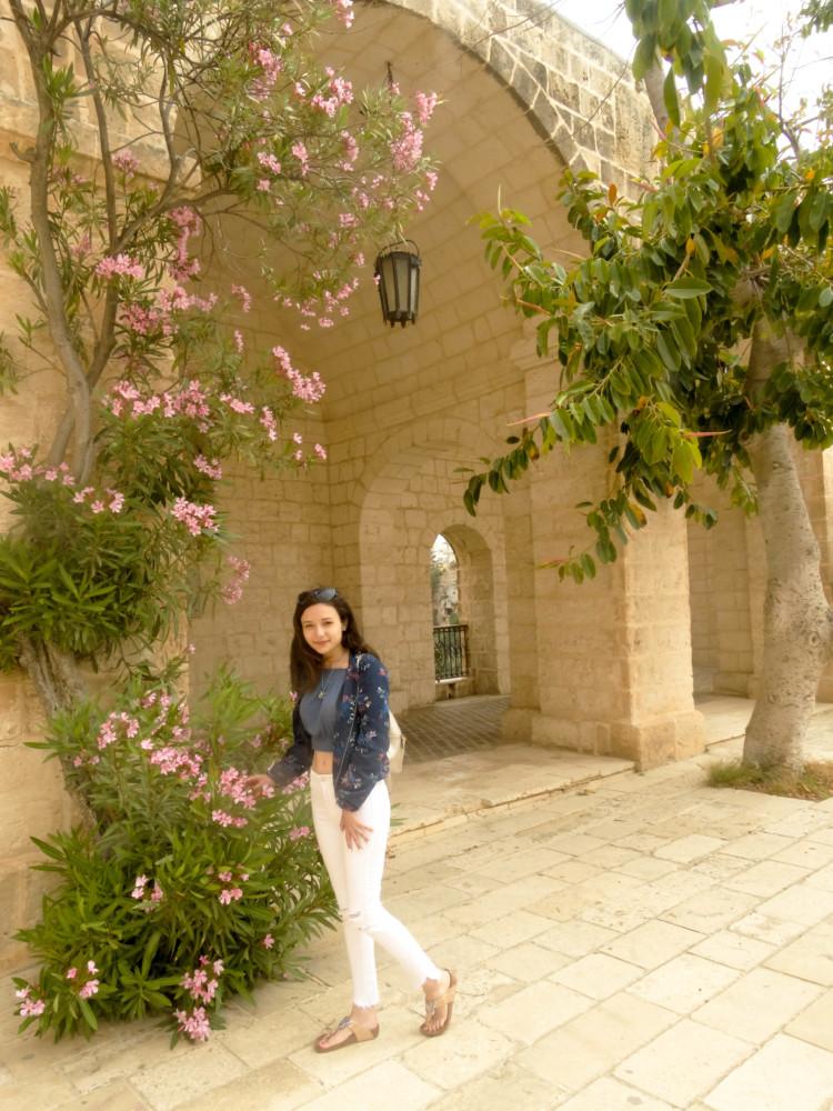 Mellieha Malta Flori