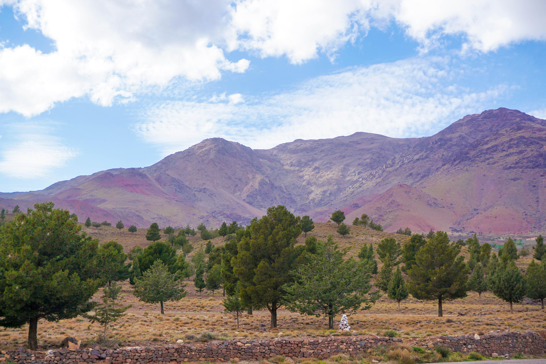 Muntii Atlas Maroc Excursie
