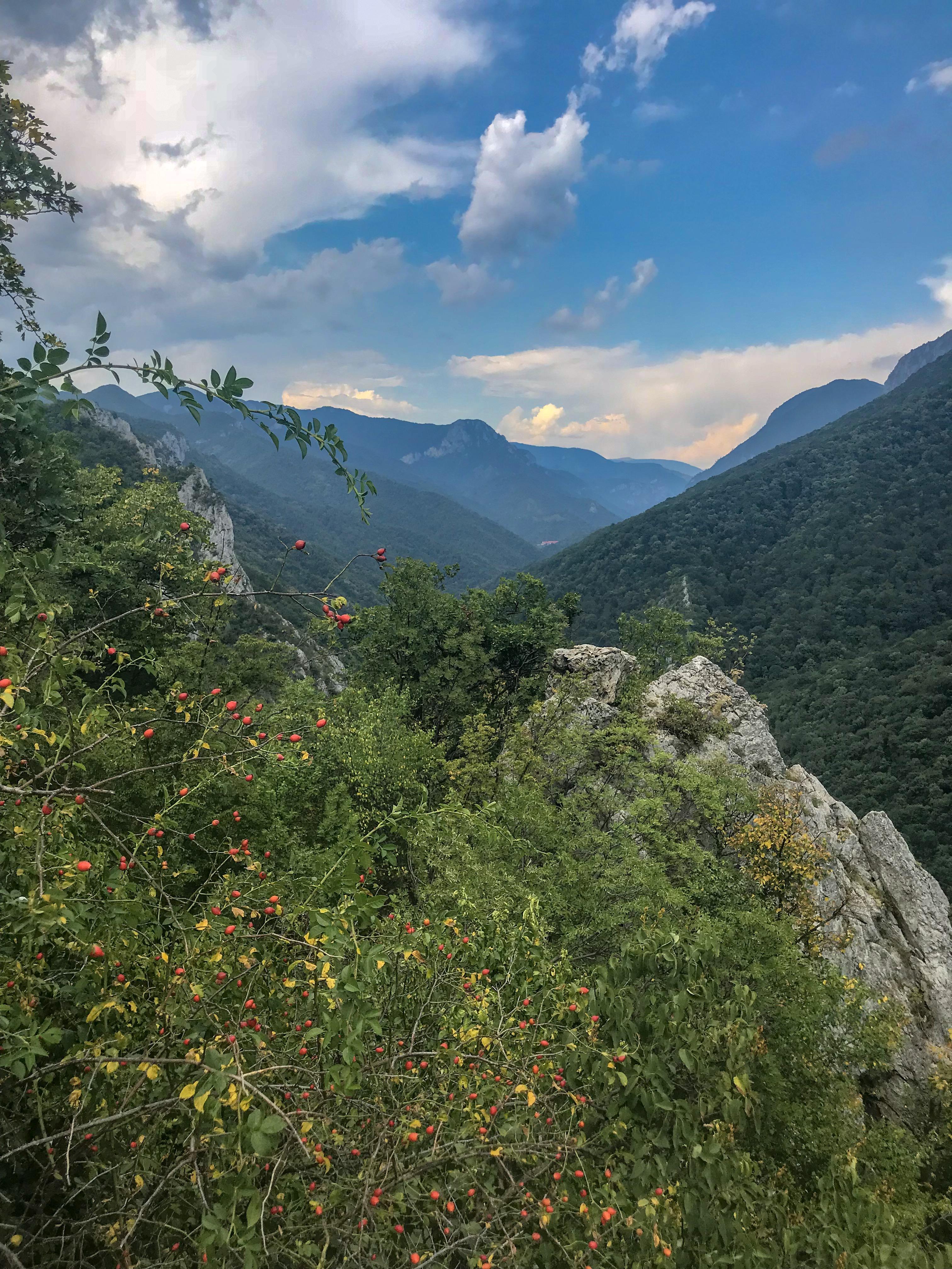 Peisaj Domogled Valea Cernei