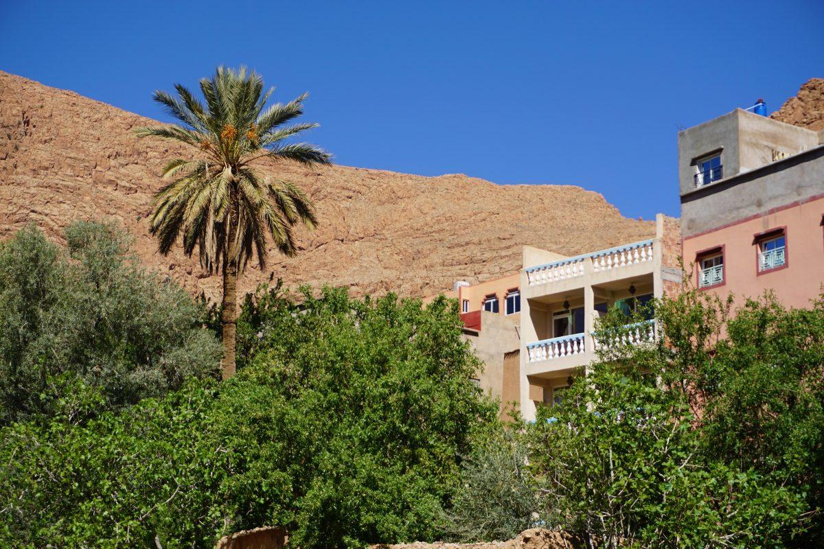 Tinghir Berber Sat