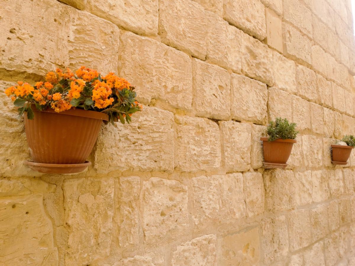Ziduri Vacanta Mdina