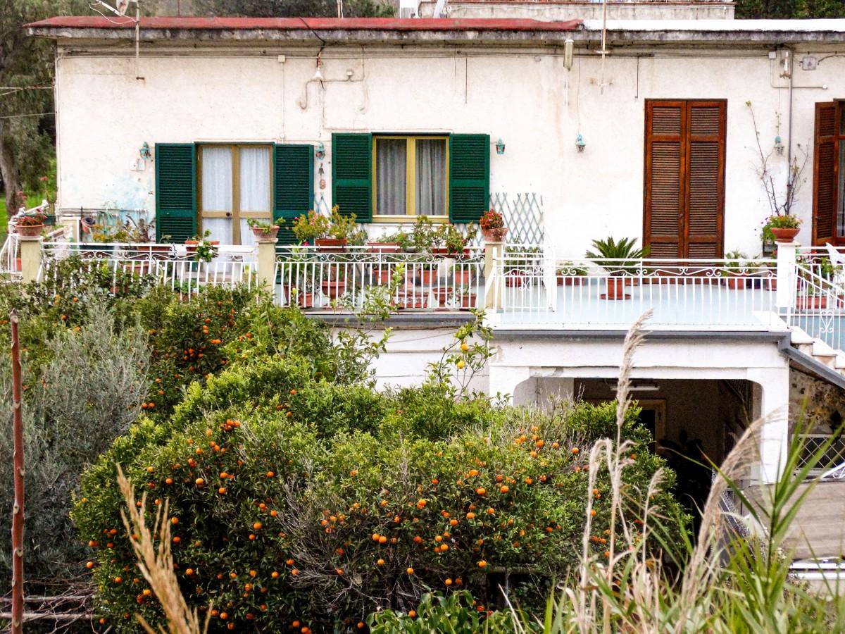 Portocali Cartiere Vacanta Napoli