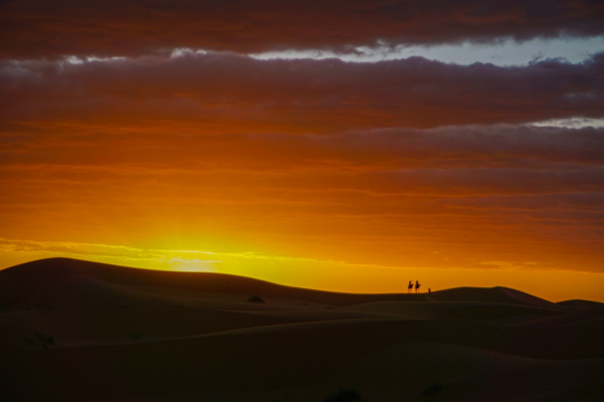 Rasarit Sahara de Vest Camile
