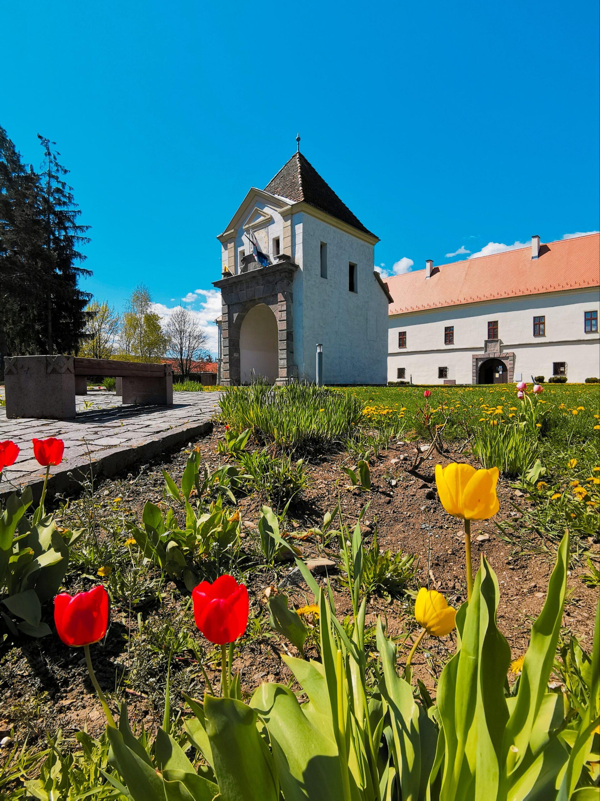 Castelul Miko Secuiesc