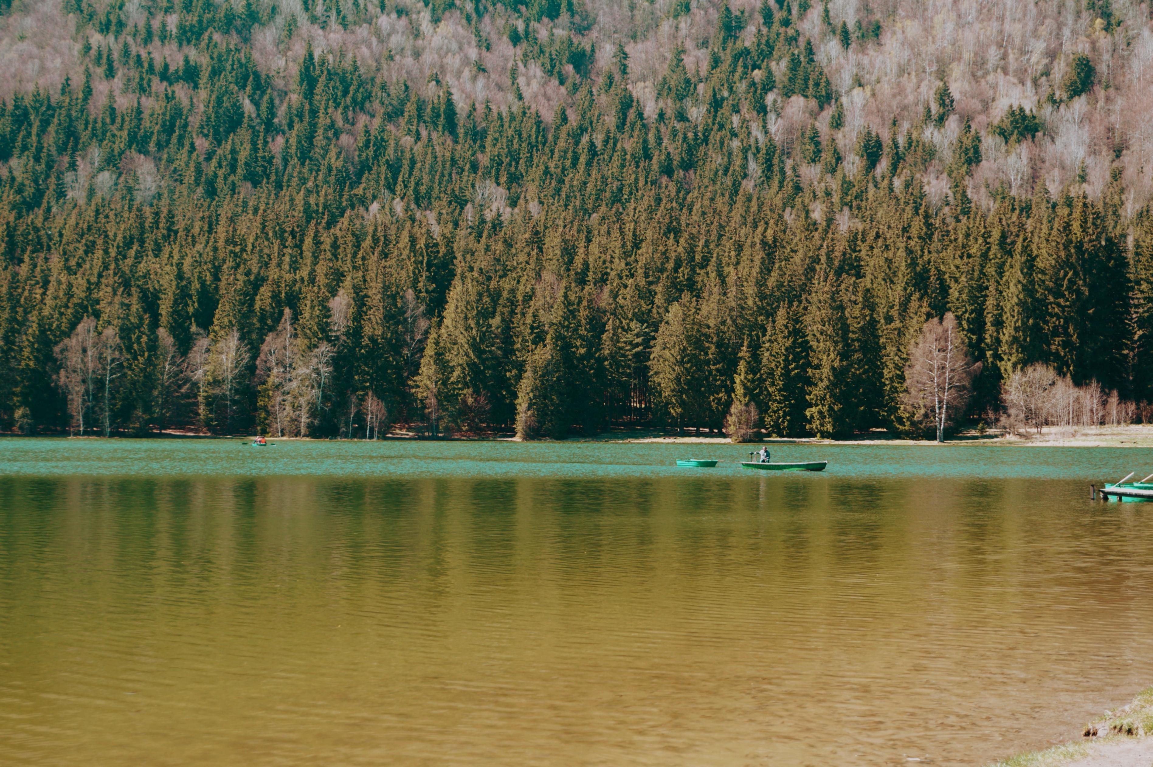 Lacul Sfanta Ana Culoare