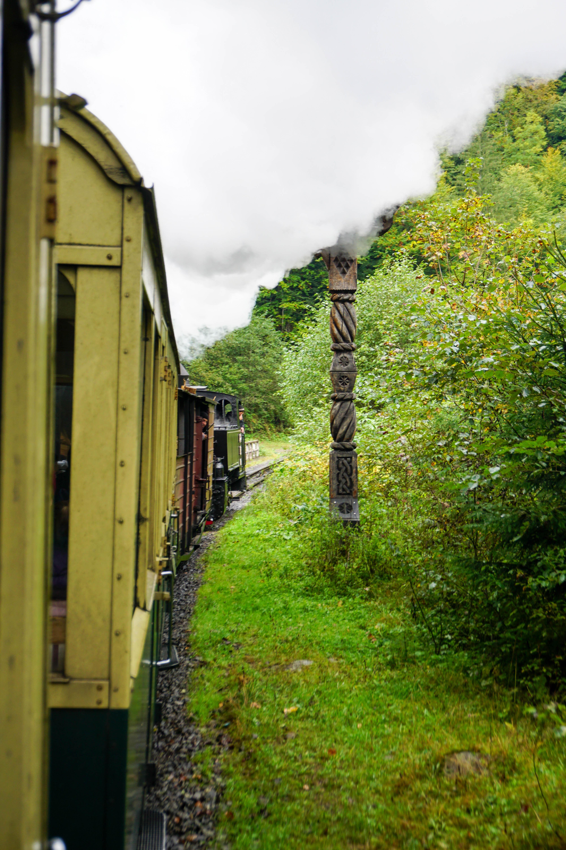 Maramures Tren