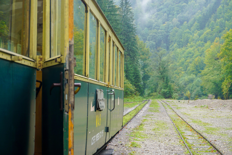 Tren Forestier Maramures